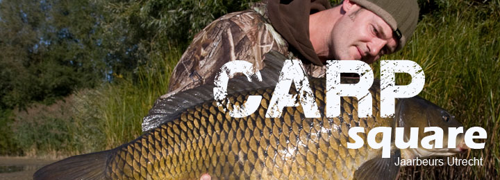 carpsquare1